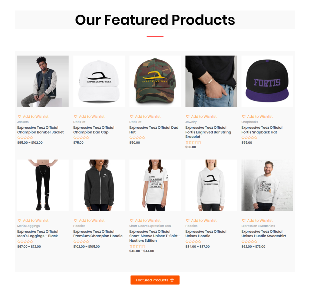 ecommerce website developed by Expressive Teez